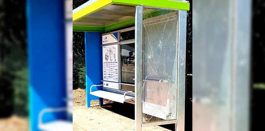 Vandalised GO GEORGE bus shelter