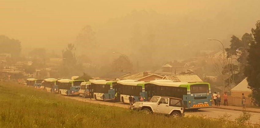 Golden Valley Blanco Go George bus convoy