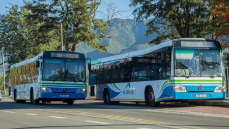 GO GEORGE buses en route
